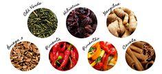 Conheça os alimentos que ajudam a emagrecer | Território Animale