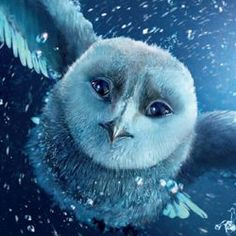 owl from 'Legend of the Guardians...by Lasky