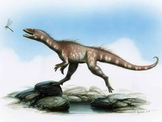 The T-Rex has a Welsh cousin: New Jurassic-era dinosaur species discovered in Wales - Home News - UK - The Independent