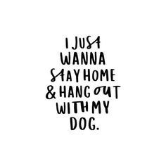 I Just Wanna Stay Home And Hang Out With My Dog - Funny Dog Quote Typography Digital Art Print art breeds cutest funny training bilder lustig welpen Dog Quotes Funny, Mom Quotes, Funny Dogs, Life Quotes, Dog Quotes Love, Quotes On Dogs, Quotes About Dogs, Best Dog Quotes, Wisdom Quotes