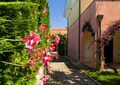 Relais Le Magnolie #mare #estate #casalvelino #villaggio