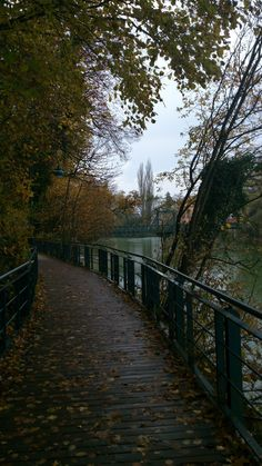 . Steyr, Austria, Sidewalk, Autumn, Walkway, Fall, Walkways