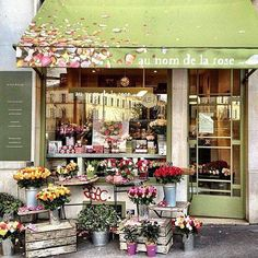 Au nom de la Rose The quaint store in Paris that sells only roses: Au nom de la Rose It's now a fantastic global franchise too! But oh, it's adorable when you encounter it in Paris.