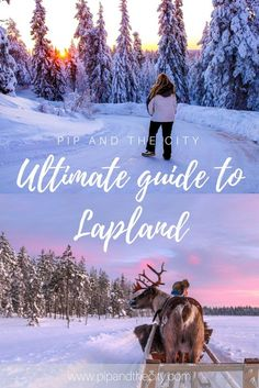 Ultimate guide to Lapland Have you ever dreamed of visiting Lapland? With sweeping arctic wilderness, dreamy snowscapes, colourful northern lights, midnight sun and herds of reindeer, it's surely the ultimate travel bucket list destination? I recently visited a very snowy Lapland with my Husband, so I have created the ultimate guide to Lapland, so that you can start planning your dream holiday to Lapland today. #Lapland #LaplandGuide #TravelBlogger #TravelGuide #wanderlust