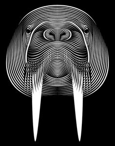 In his series entitled Faces, designer Patrick Seymour from Montreal Canada uses bold lines and symmetry to create some striking line art illustrations.