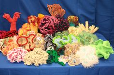 Oh my goodness!  This is so awesome!!! - Crochet Coral Reefs - The Gainesville Florida Reef - Guides @ UF at University of Florida