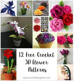12 Amazing Free Crochet 3D Flower Patterns to Love and Make. Crochet your very own 3D flowers with these amazing patterns.