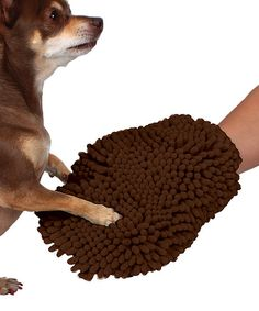 Look at this American Kennel Club Brown Chenille Bathing Mitt on #zulily today!
