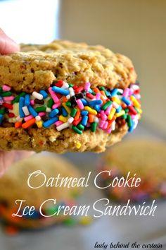 Oatmeal Cookie Ice Cream Sandwich