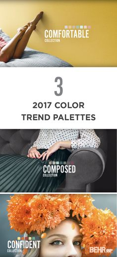 colorfully  behr    harvest colors