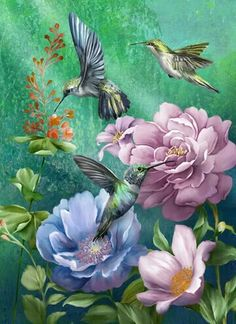 Beautiful hummingbirds and flowers