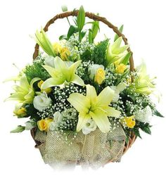 Time and again, we always have been inundated with the doubt of having Flowers Delivery in Delhi. Delhi traditionally has a lot of florists in all parts of the town.  Visit:- http://flowershop18.co.in/flowers-delivery-in-gurgaon.aspx
