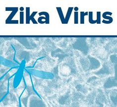 What you need to know about the Zika virus outbreak - UC Davis Health System