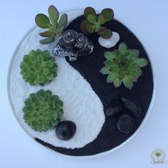 10 Mini Zen Garden Ideas, Awesome and also Beautiful Garden ideas 10 Mini. 10 Mini Zen Garden Ideas, Awesome and also Beautiful Garden ideas 10 Mini Zen Garden Ideas, Jardin Zen Miniature, Mini Jardin Zen, Mini Zen Garden, Indoor Zen Garden, Mini Cactus Garden, Balcony Gardening, Herb Gardening, Miniature Gardens, Organic Gardening