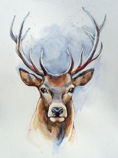 Aquarell – Hirsch, Aquarell, Bild, Original – ein Designerstück von Art_Eck bei… - オーラルケアに関するすべて - Everything About Oral Care Watercolor Deer, Watercolor Pictures, Watercolor Animals, Watercolor Paintings, Animal Paintings, Animal Drawings, Art Drawings, Deer Paintings, Deer Drawing