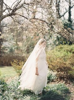 Chapel length veil – works with nearly all dresses, surprisingly lengthening so don't automatically rule it out if you are not the tallest of brides! Wedding Hairstyles with Drop Veil Wedding Veils, Wedding Bride, Dream Wedding, Wedding Day, Bridal Veils, Bridal Hair, Ethereal Wedding, Woodsy Wedding, Wedding Dresses