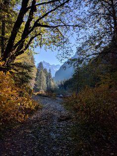 Monte Cristo Trail, WA, USA [3024/4032] #nature and Science