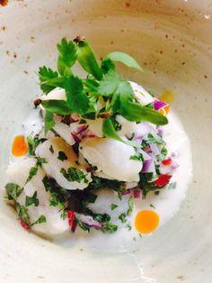 Bay scallop coconut milk ceviche and Oregon albacore crudo.  Come try the dishes...