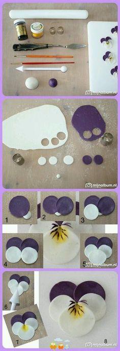 Marzipan flower (Viola arvensis)