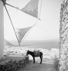 Mykonos island, Photo by Petros Brousalis Greece History, Myconos, Old Time Photos, Greece Photography, Mykonos Island, Greek Culture, Travel Music, Paradise On Earth, Athens Greece