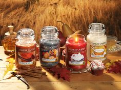 beautiful Halloween candy fall nature autumn candles smell Flame cakes honeys autumn leaves autumn blog fall blog yankee candle fall colors hallowmoon pice autumn scent