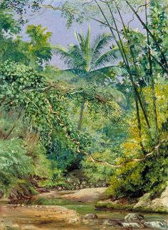 Bamboos, Cocoa Nut Trees and Other Vegetation in the Bath Valley, Jamaica, c. 1872 -   Marianne North (English, 1830-1890)