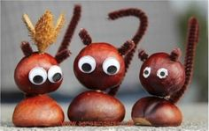 decoratiuni din ghinde si castane Acord and chestnut crafts 7 Animal Crafts For Kids, Diy Crafts For Kids, Arts And Crafts, Autumn Crafts, Nature Crafts, Ladybug Crafts, Theme Noel, Preschool Crafts, Diy Art