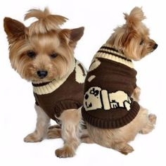 Dreaming Dog Sweater - Brown