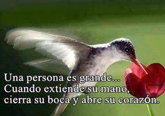 Una persona es grande...........