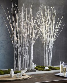 Lighted Birch Forest in Large design by Roost