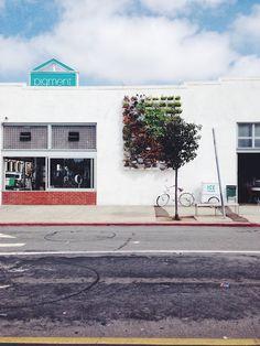 Travel: San Diego, California ~ North Park ~ Streets of SAN DIEGO ~ Pigment