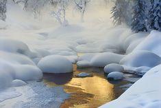 Siberian tundra.