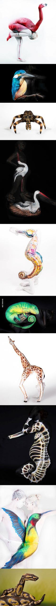 Animal Body Art