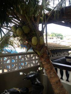 My travel to Cape Coast, Ghana.