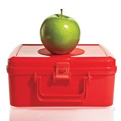 Healthy Lunch Box Recipes for Kids (or Adults!)