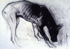 Charcoal Great Dane by Mike Hernandez