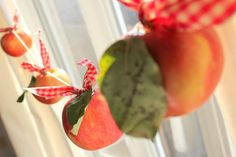 Craftberry Bush: Freshly picked apple bunting.../Done that for Fall!