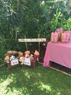 """Adopt a teddy station and the picnic baskets made from 12x12 Kraft paper with some gingham fabric glued into the centre. I collected teddies off gumtree and made """"adopt a teddy"""" certificates."""