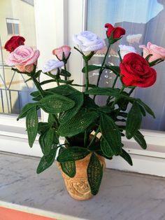 Da secoli simbolo di amore, bellezza e perfezione, è il fiore per eccellenza. Il significato della rosa varia a seconda del colore dei su...