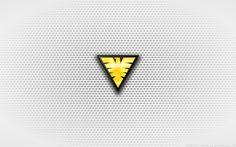 wallpaper___jean_grey_s_white_phoenix_logo_by_kalangozilla-d5wfifx.jpg (900×563)