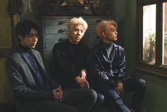 Kim Wonpil, Day6, Great Bands, Kpop Boy, Boys Who, Boyfriend Material, Photo Cards, Boy Groups, Actors