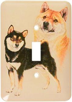 Japanese Dog Breeds, Japanese Dogs, Husky, Corgi, Animals, Corgis, Animales, Animaux, Animal