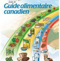 Le Guide alimentaire canadien et l'assiette équilibrée   Nos Petits Mangeurs