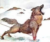 GLEIPNIR-Corrente feita pelos anões para prender o lobo Fenrir. Ela parece uma fita de seda; porém, depois de amarrado com ela, quanto mais Fenrir luta para livrar-se, mais forte ela fica e mais ele se enreda.