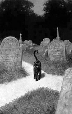 Black cat at a cemetery crossroad. I'… Black cat at a cemetery crossroad. I'm just saying that lots of beings would be quite at home as a black cat. (Art by Tristan Elwell) Halloween Pictures, Halloween Art, Spooky Pictures, Halloween Black Cat, Vintage Halloween Cards, Happy Halloween, Witch Aesthetic, Aesthetic Art, Black Cat Aesthetic