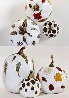 Zucche bianche decorate
