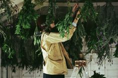 drying herbs | photo by parker fitzgerald for Kinfolk Vol. 5