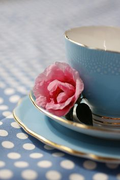 blue tea cup! by Caught In The Moment Photography, via Flickr