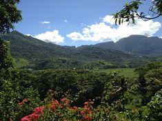 In der Nähe von Nadi ist es unglaublich grün und die Natur wunderschön. Bungalows, Fiji, Travel Pictures, Mountains, Nature, Small Bungalow, Small Island, Snorkeling, Destinations