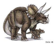Triceratops | Triceratops by *IsisMasshiro on deviantART
